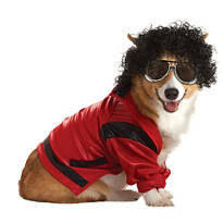 Pop King Dog Costume
