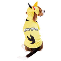 Yellow Angry Birds Dog Costume