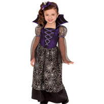 Toddler Girls Miss Web Witch Costume
