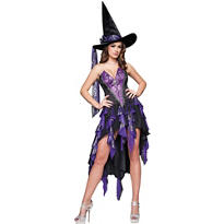 Adult Bewitching Beauty Witch Costume