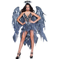 Adult Desire Dark Angel Costume Deluxe