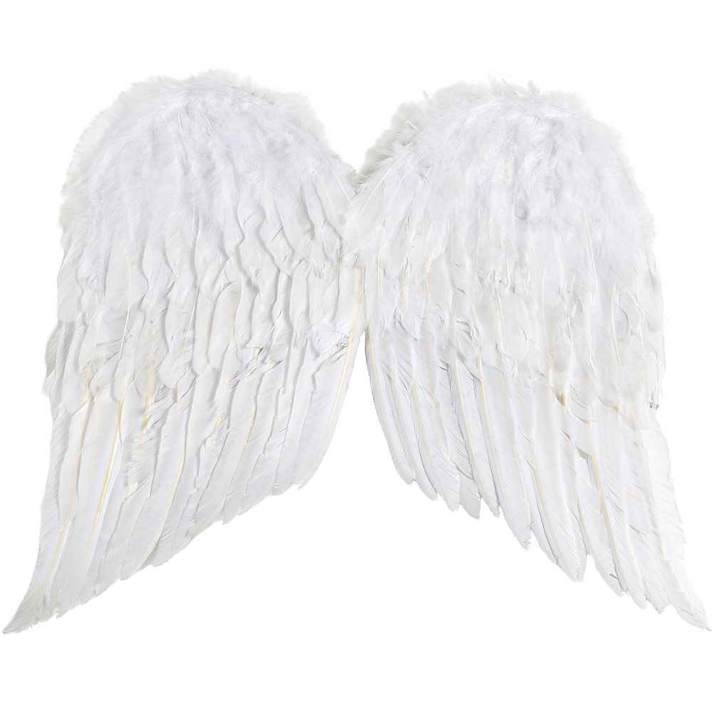 Nav Item for White Angel Wings Image #2