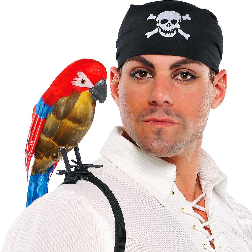 parrot head gear