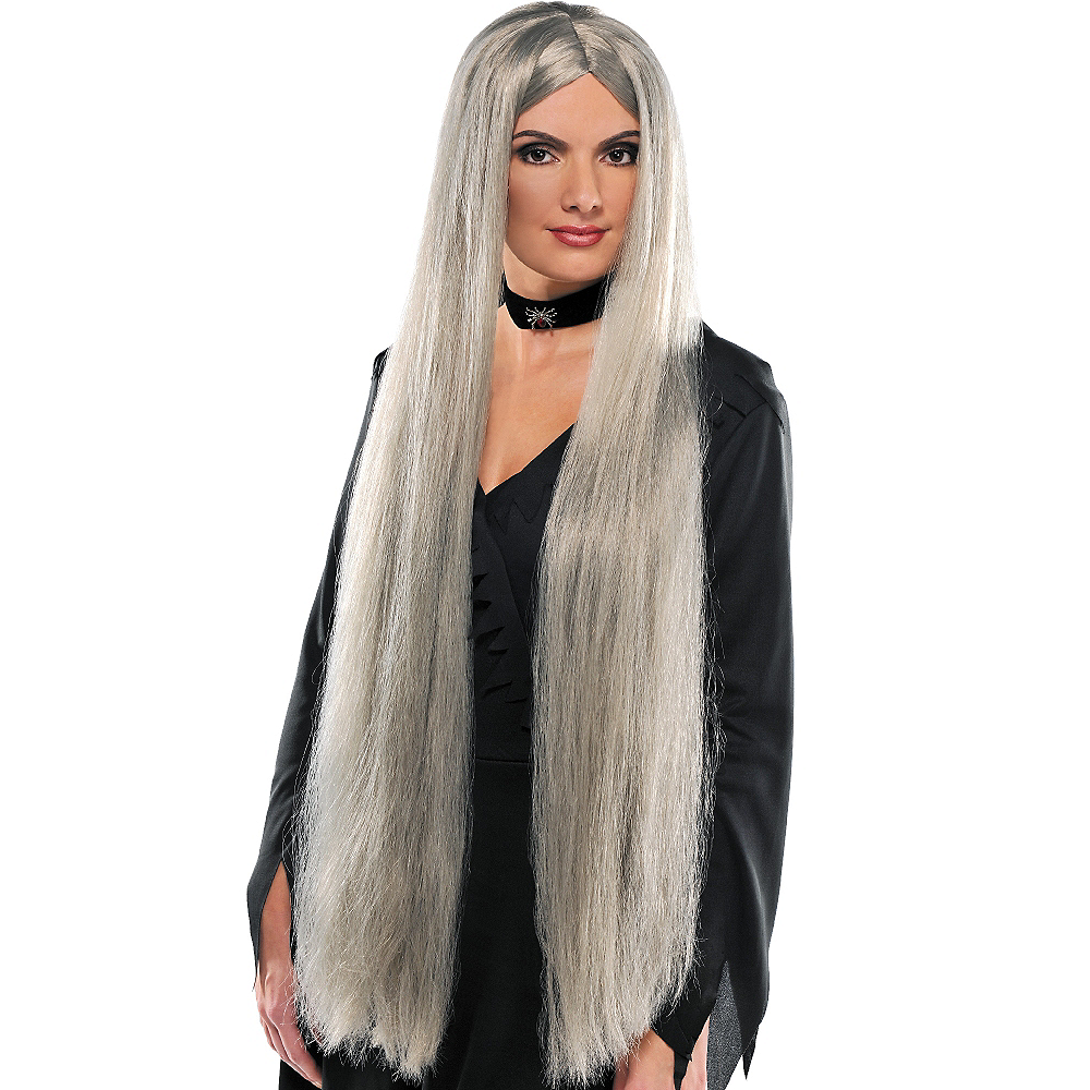 Extra Long Gray Wig Image #1