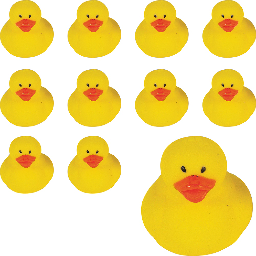 Rubber Ducks 18ct Image #1