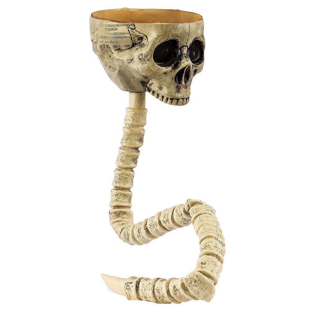 Skull Funnel Image #1