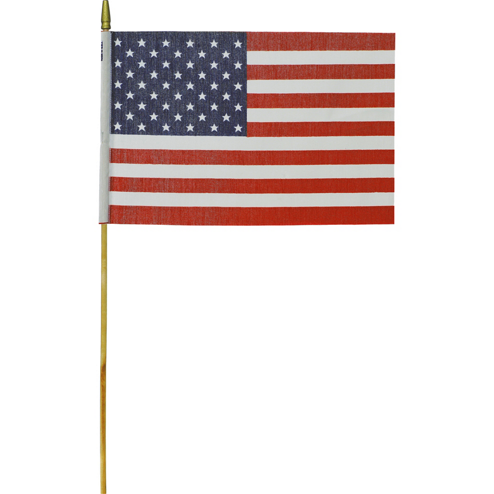 Medium American Flag Image #1