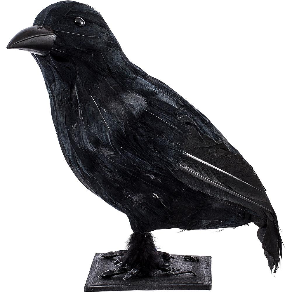 7c9b74e48be7a ... Nav Item for Black Crow Image  2 ...