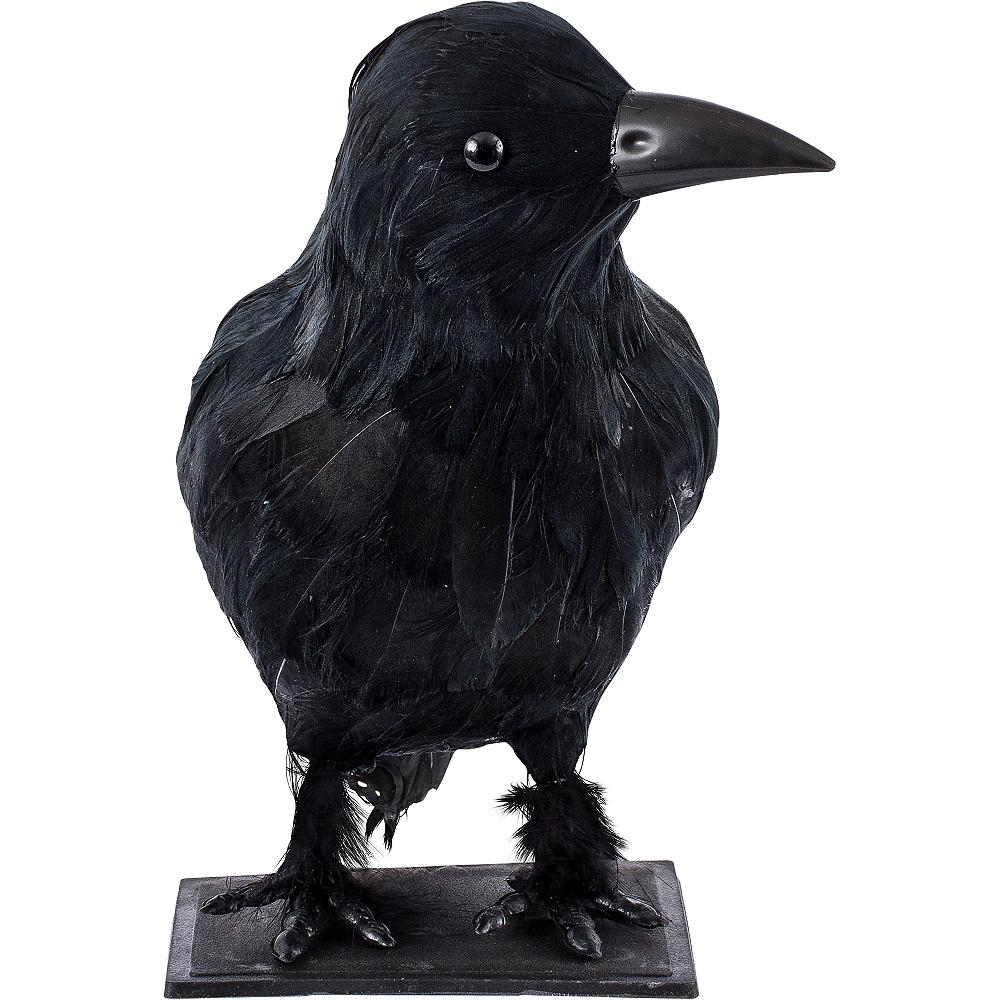 66cfa8bdbc7ac ... Nav Item for Black Crow Image  3