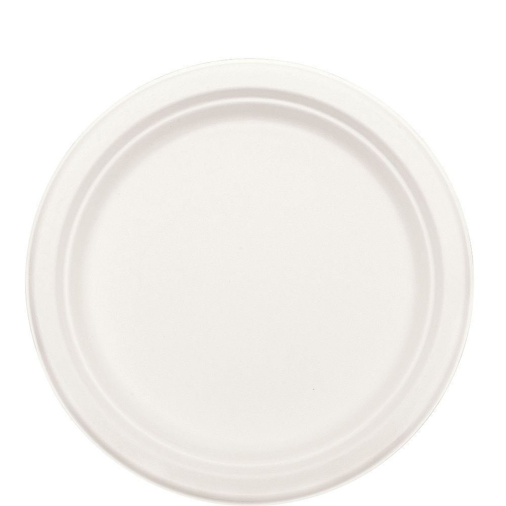Eco-Friendly White Sugar Cane Lunch Plates 50ct Image #2