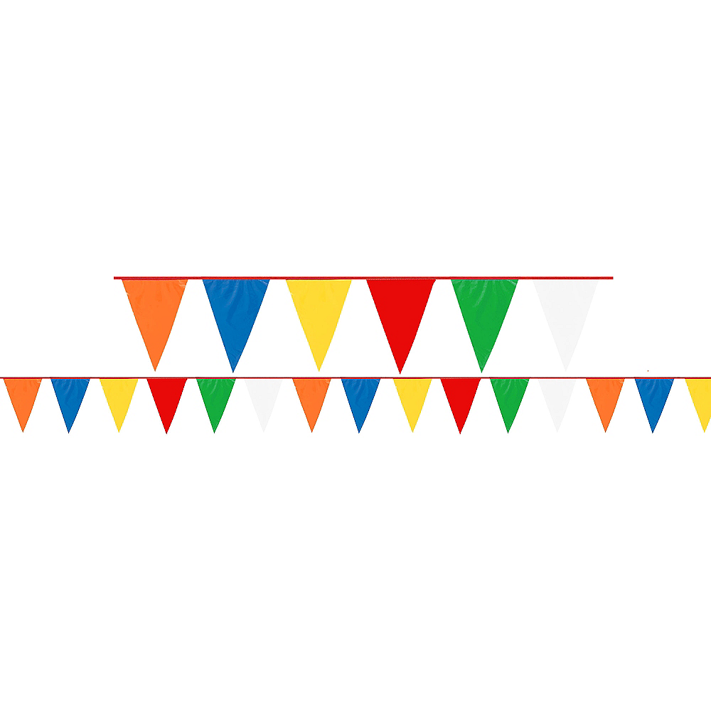Multicolor Pennant Banner Image #1