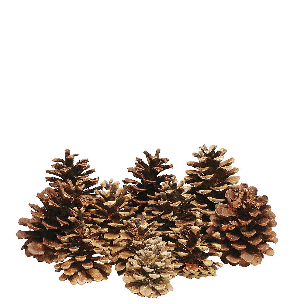 Cinnamon-Scented Pinecones 16ct Image #1