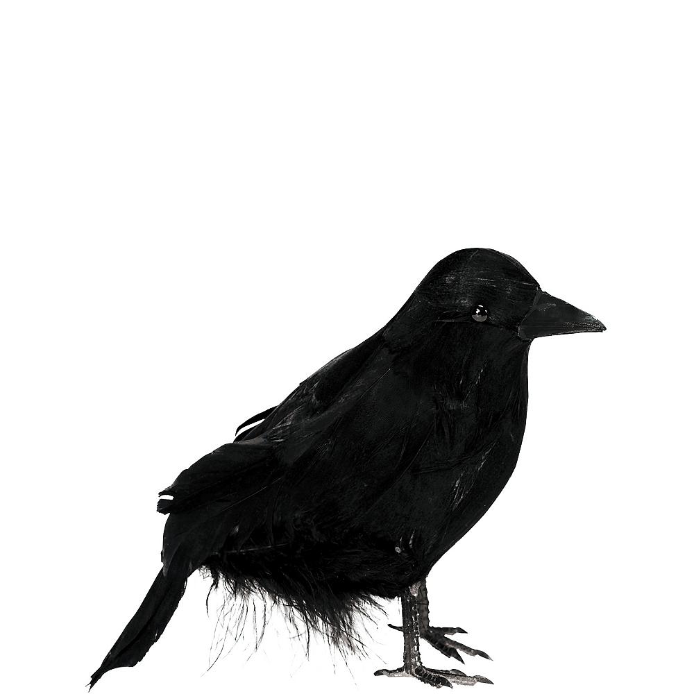 Black Raven Image #1