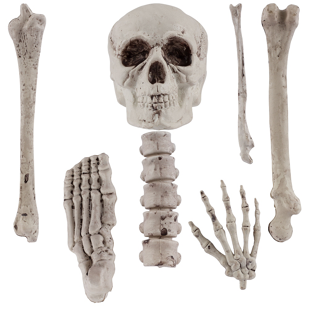 Bag of Bones 12pc Image #2