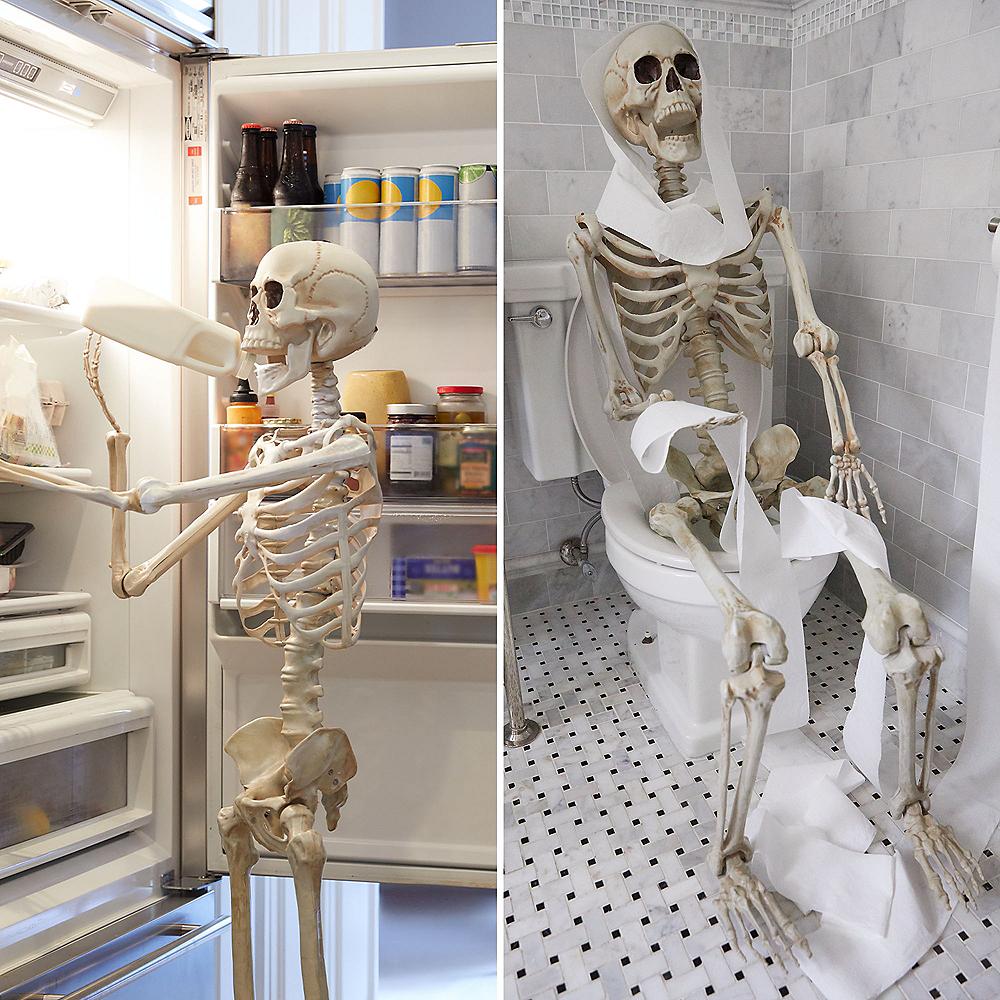 Life-Size Poseable Skeleton, 5ft Image #4