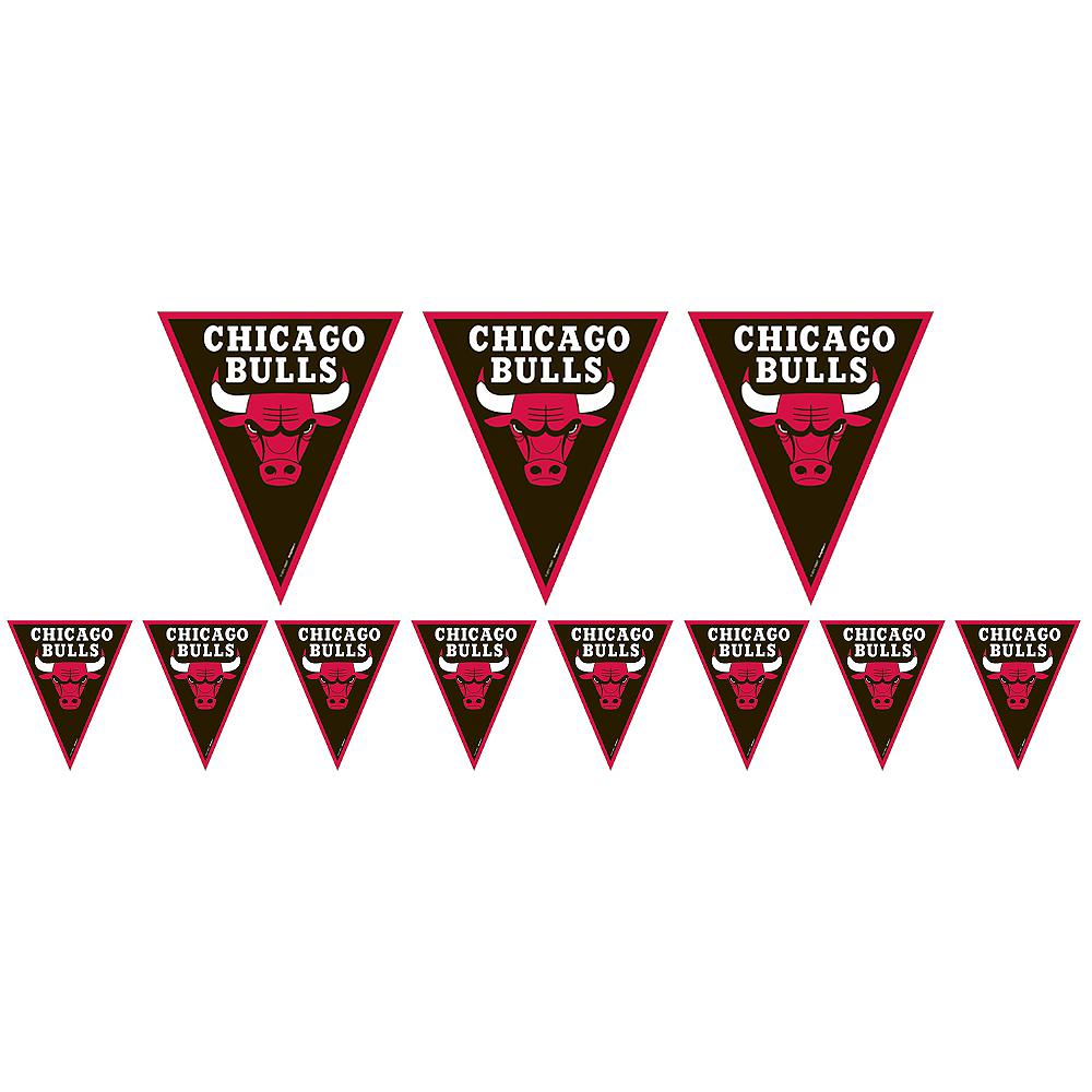 Chicago Bulls Pennant Banner Image #1