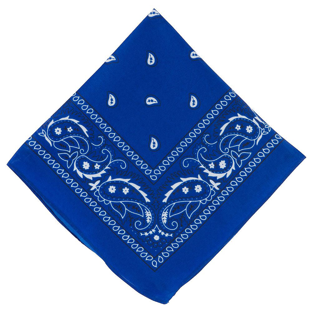 Nav Item for Blue Paisley Bandana, 20in x 20in Image #1