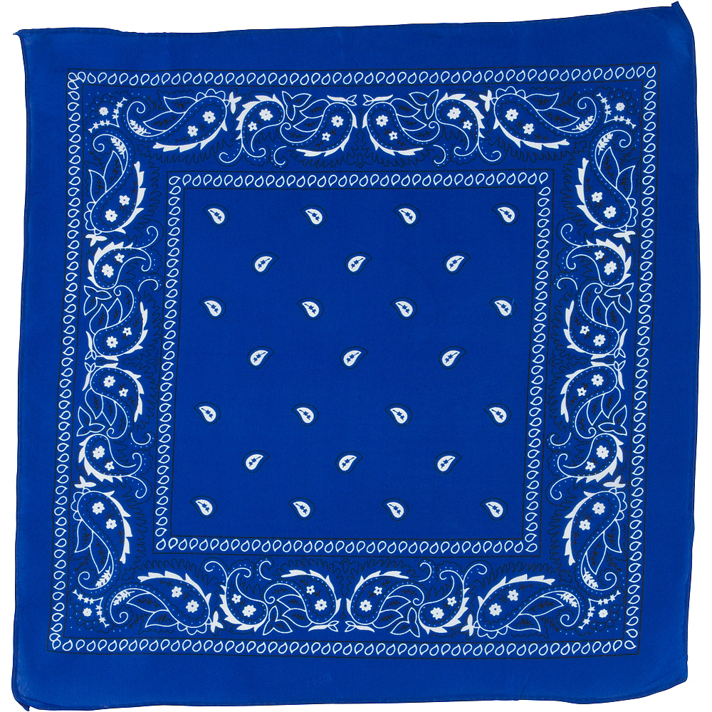 Nav Item for Blue Paisley Bandana, 20in x 20in Image #2