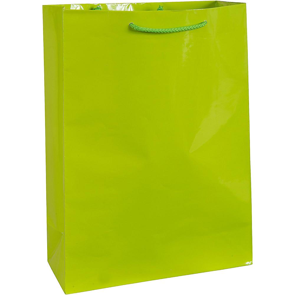 Large Kiwi Gift Bag Image #1