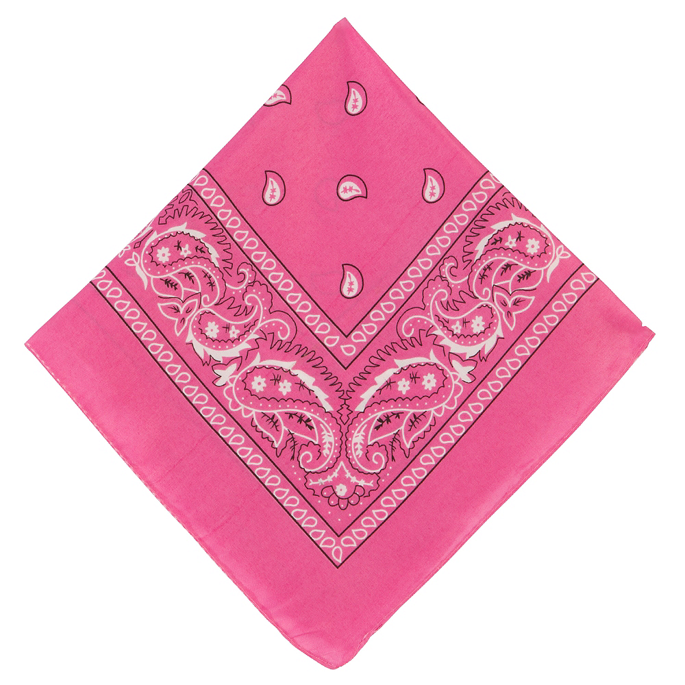 Pink Paisley Bandana, 20in x 20in Image #1