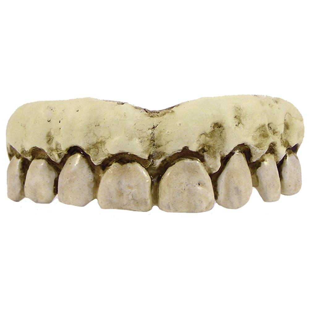 Skeleton Teeth Image #2