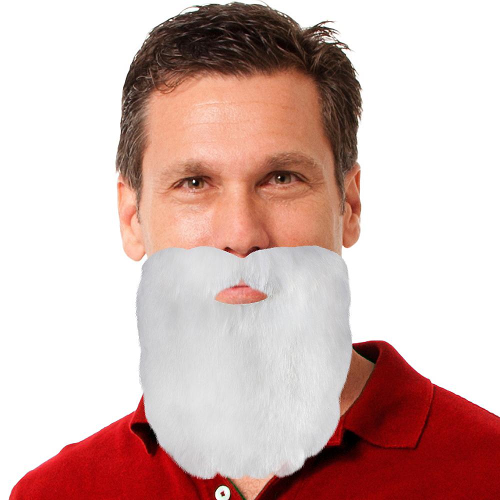 Santa Facial Hair Image #1