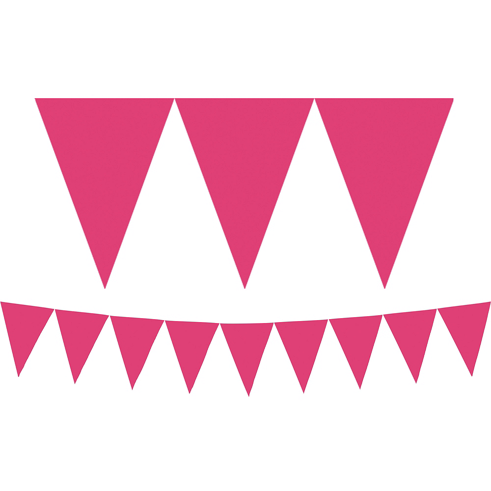 Bright Pink Pennant Banner Image #1