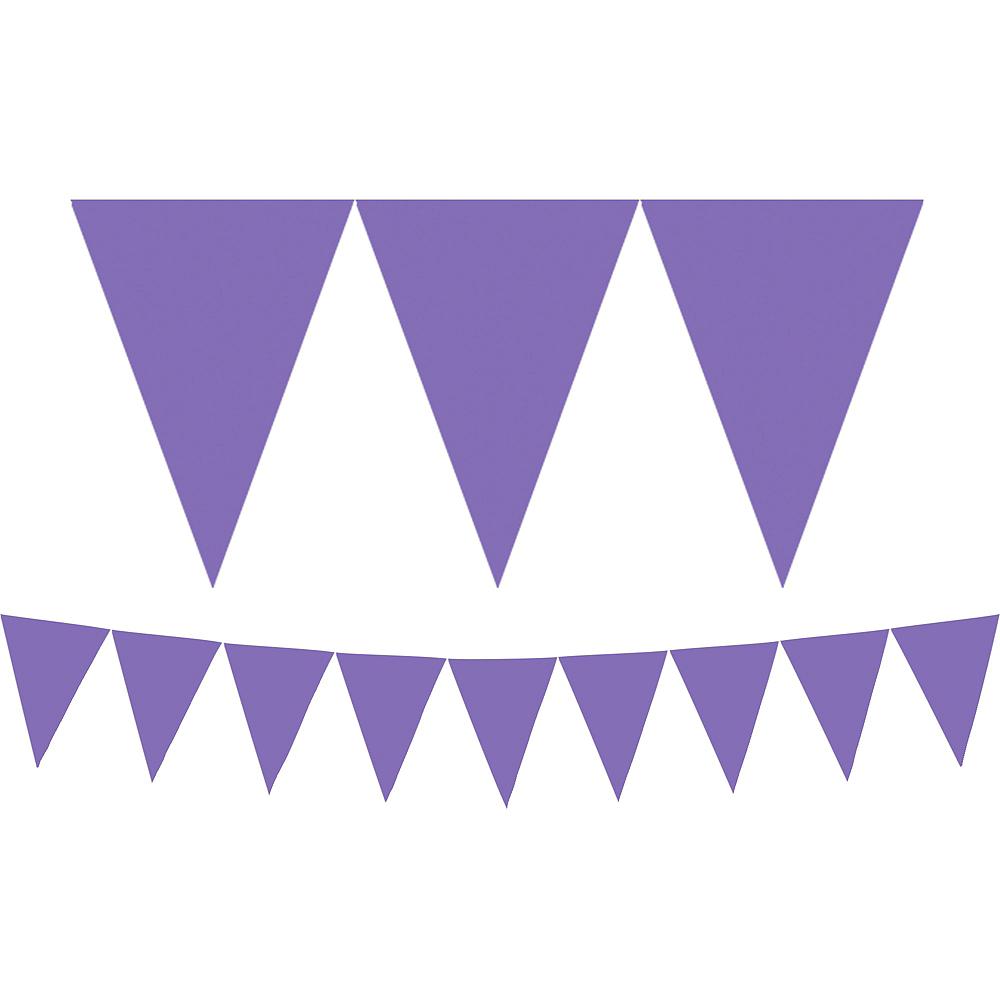 Purple Pennant Banner Image #1