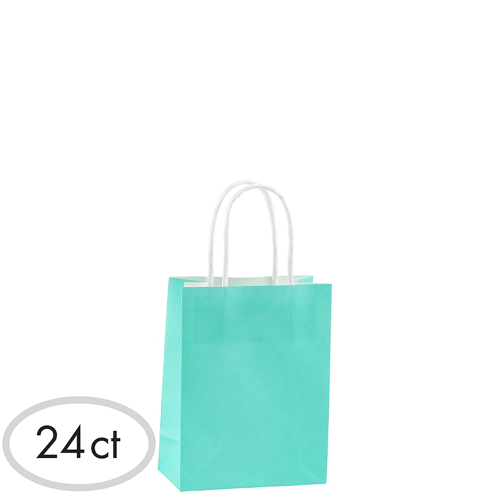 Small Robin's Egg Blue Kraft Bags 24ct Image #1