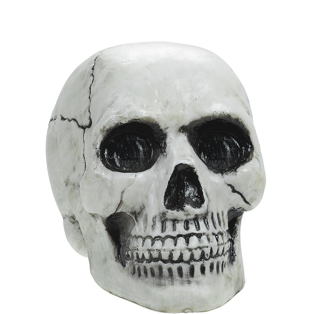 Plastic Skull Image #1