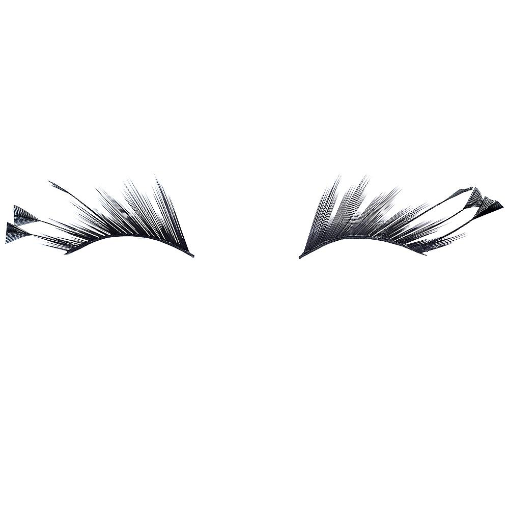 Alluring Feathers False Eyelashes Kit Image #2
