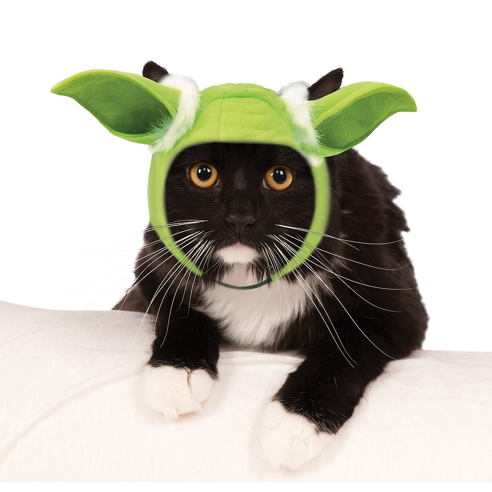 2d2f2d2a387f3 Yoda Ears Cat Hat - Star Wars Image  1