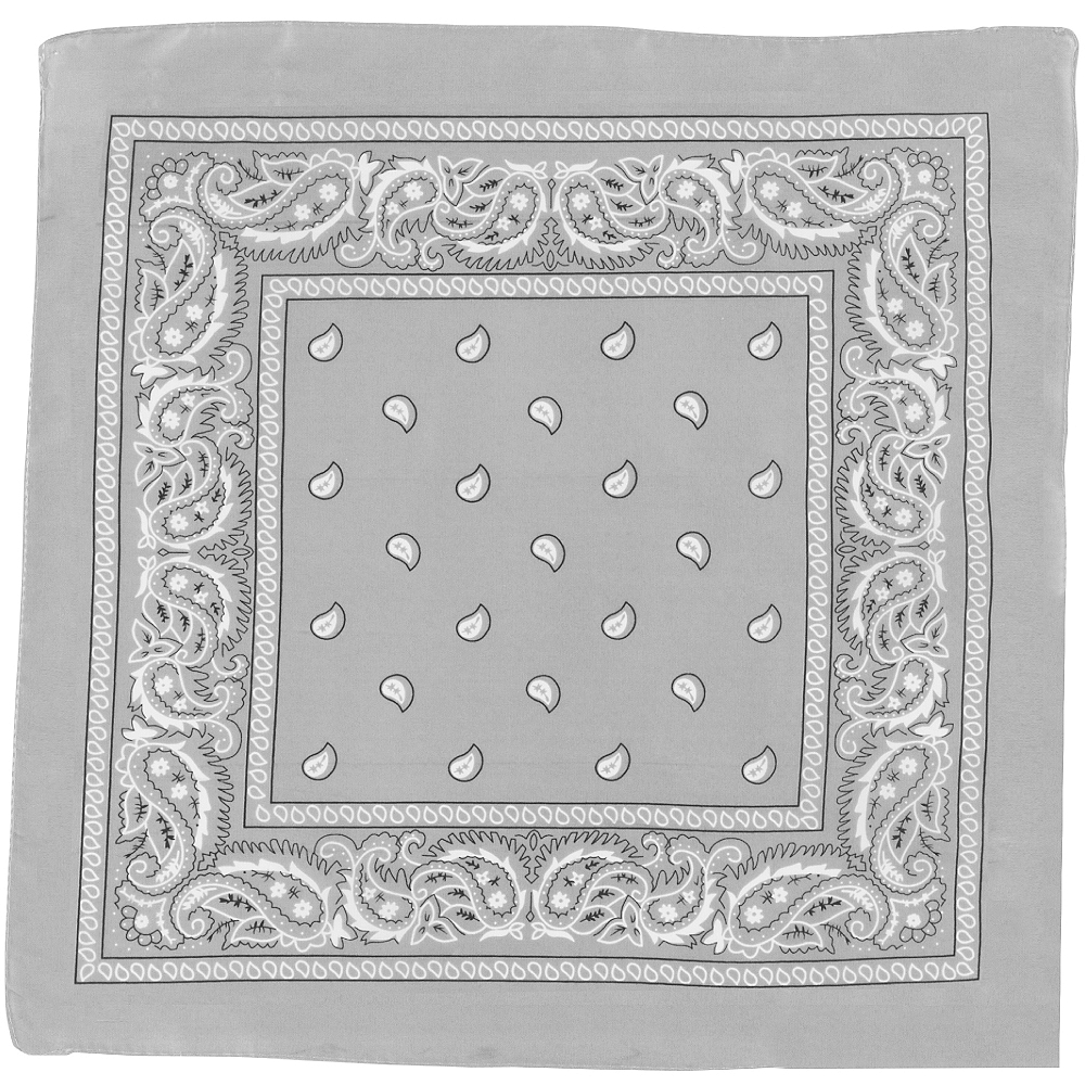 Silver Paisley Bandana, 20in x 20in Image #2