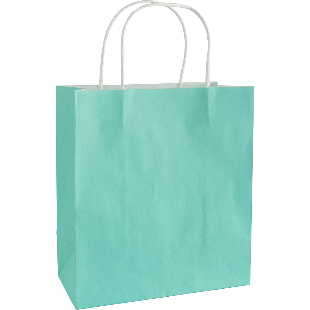 Medium Robin's Egg Blue Paper Gift Bag Image #1