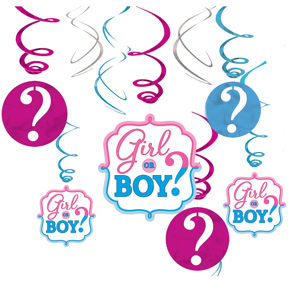 Girl or Boy Gender Reveal Swirl Decorations 12ct Image #1