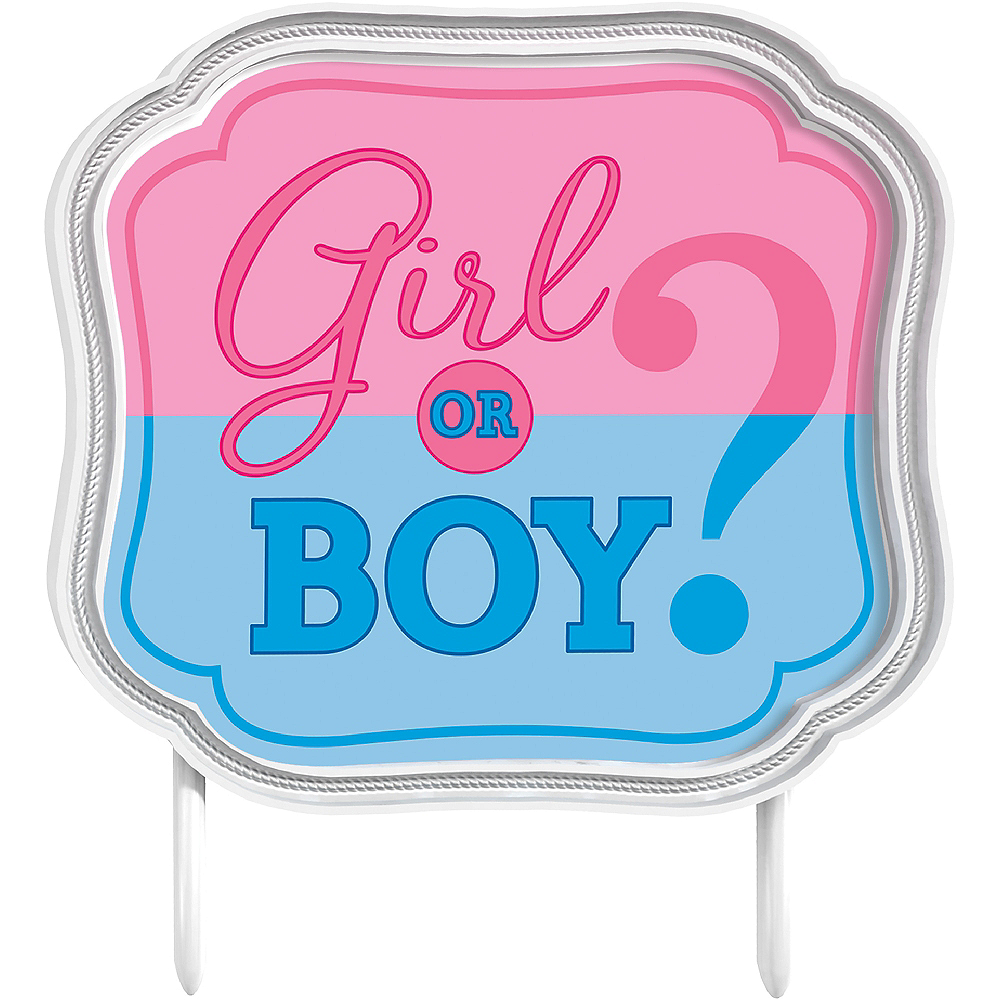 Girl or Boy Gender Reveal Cake Topper 4 3/4in x 4 1/4in | Party City