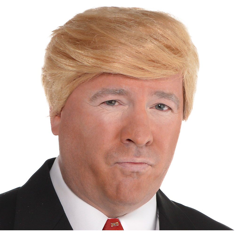 Combover Presidential Candidate Wig Image #1