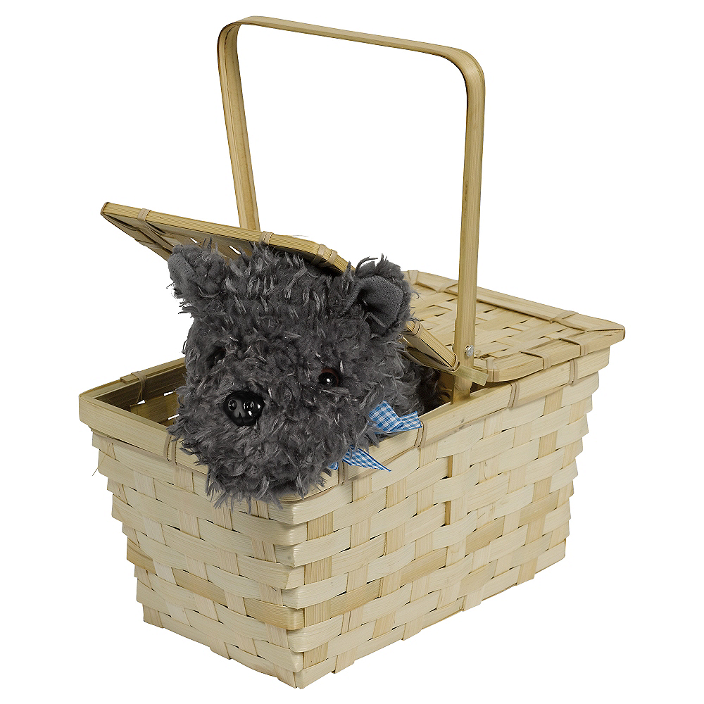 Picnic Basket with Toto - Wizard of Oz Image #1