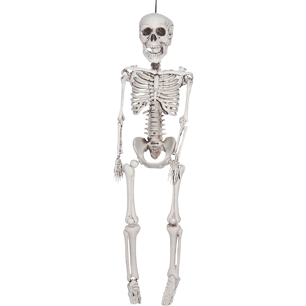 Nav Item for Realistic Hanging Skeleton Image #1