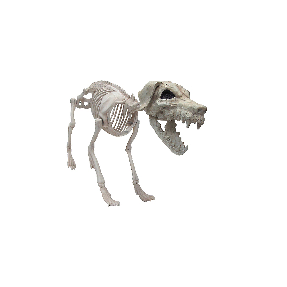 Giant Poseable Skeleton Dog Image #1