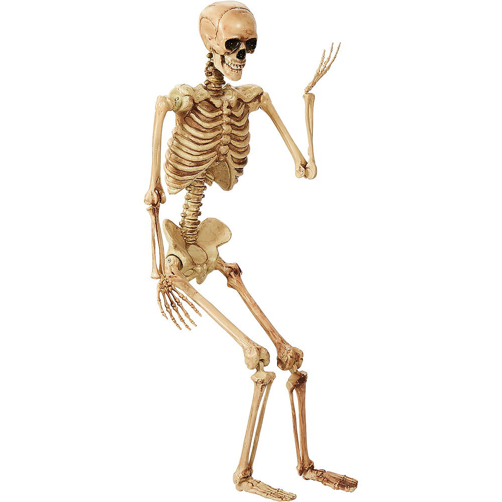 Life-Size Poseable Skeleton 2ft x 5ft | Party City