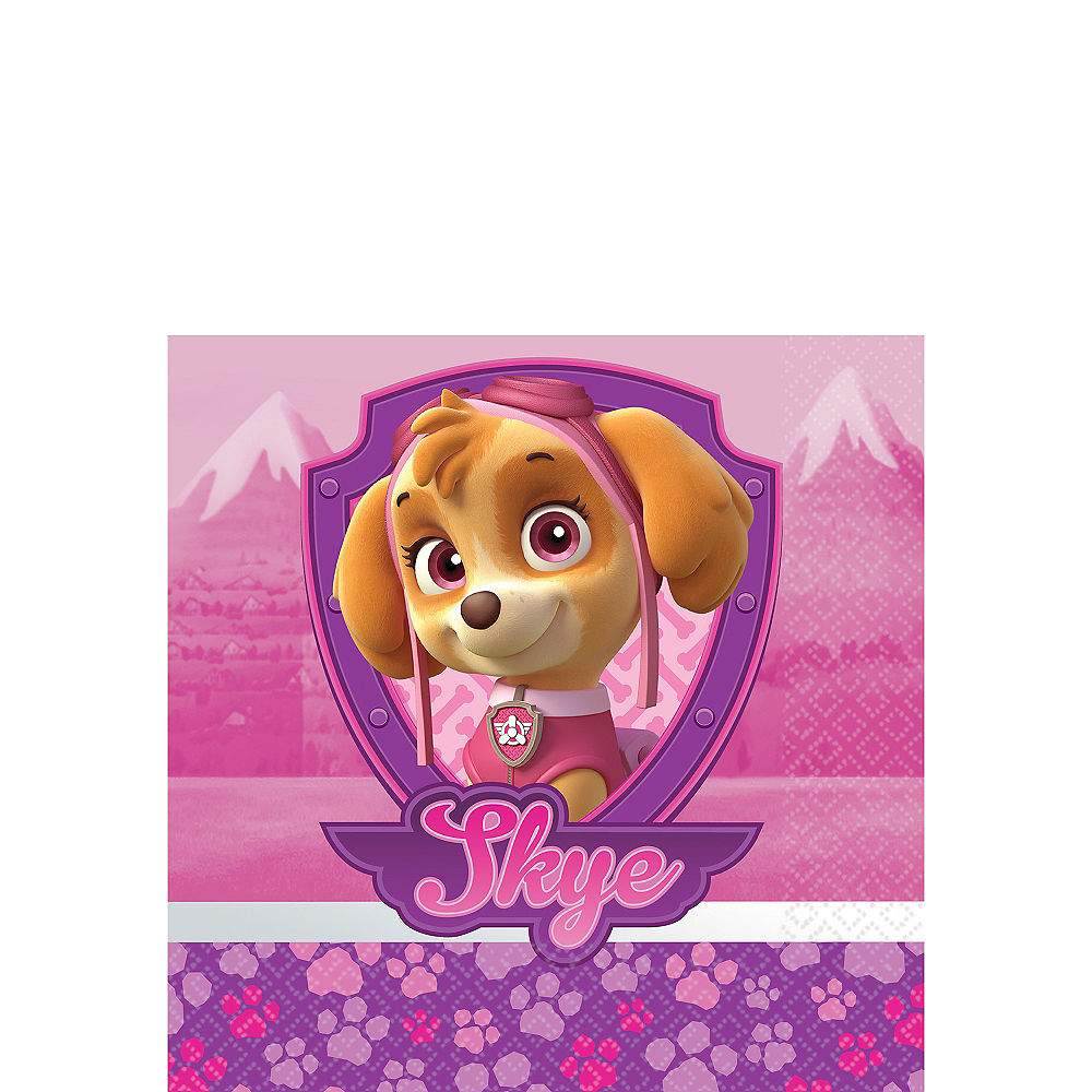 Nav Item for Pink PAW Patrol Beverage Napkins 16ct Image #1