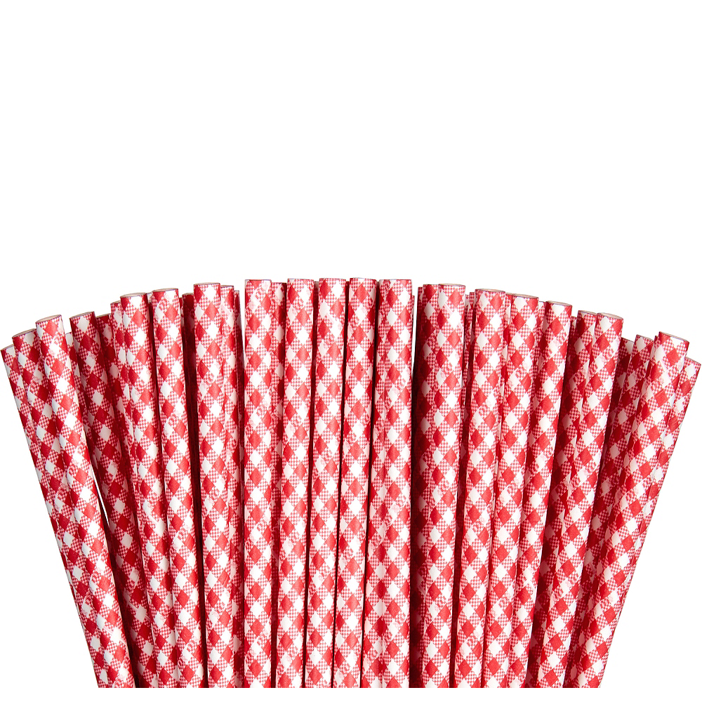 Red Gingham Paper Straws 80ct | Party City