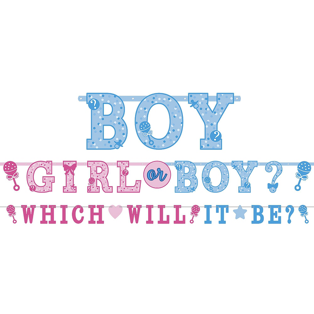 Girl or Boy Gender Reveal Party Kit 16 Guests Image #9