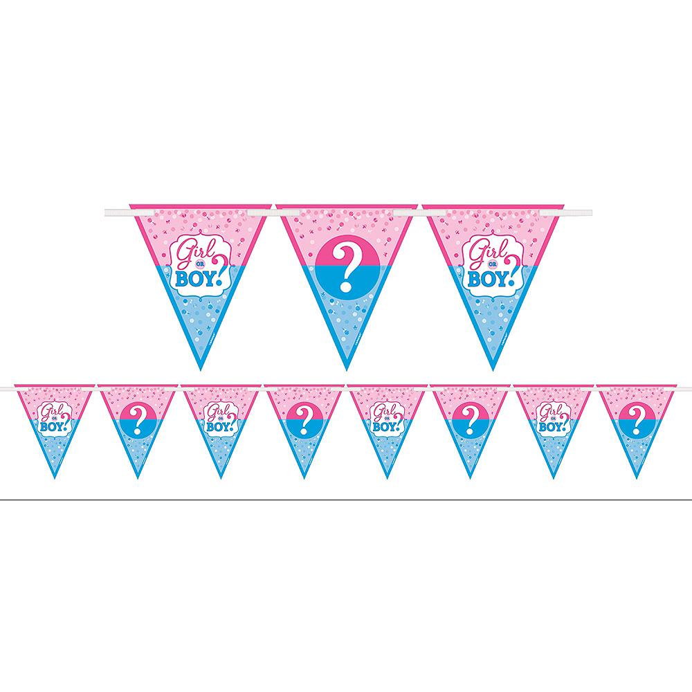 Girl or Boy Gender Reveal Decorations Shower Kit Image #2