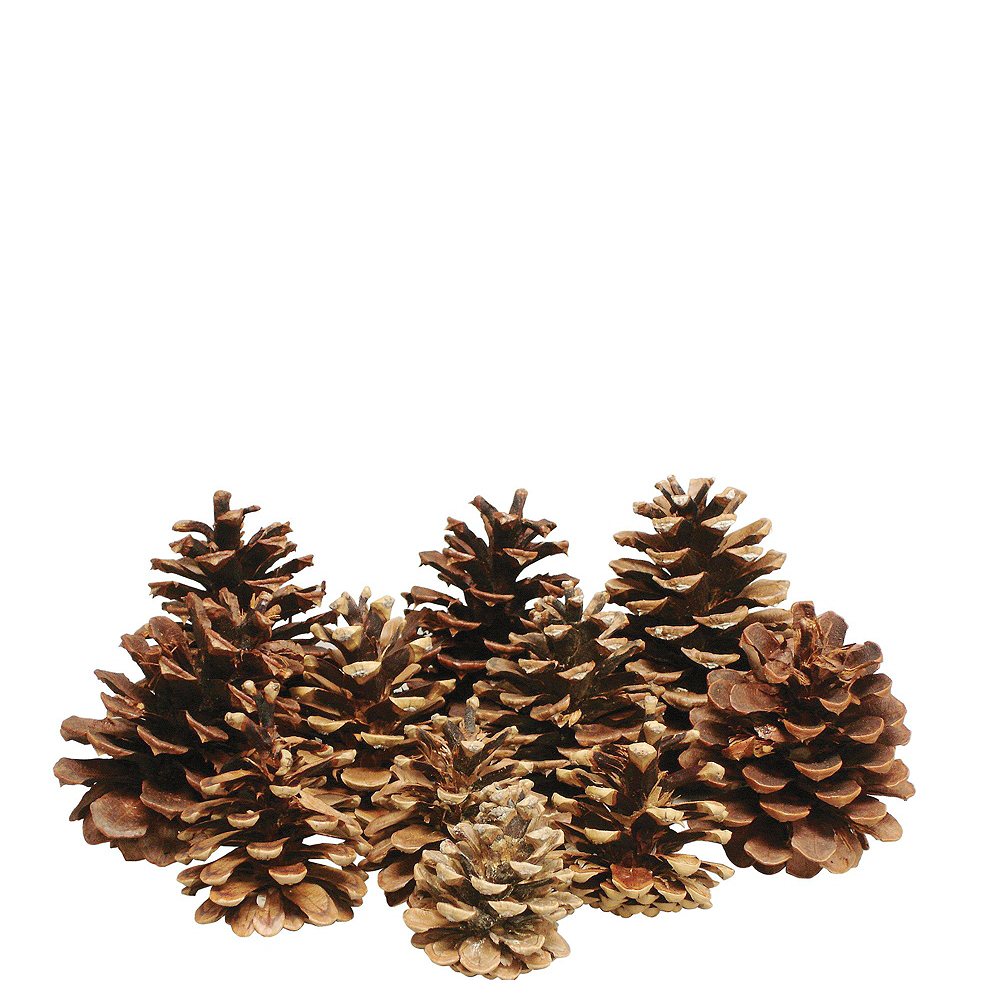 Fall Holiday Centerpiece Kit Image #3