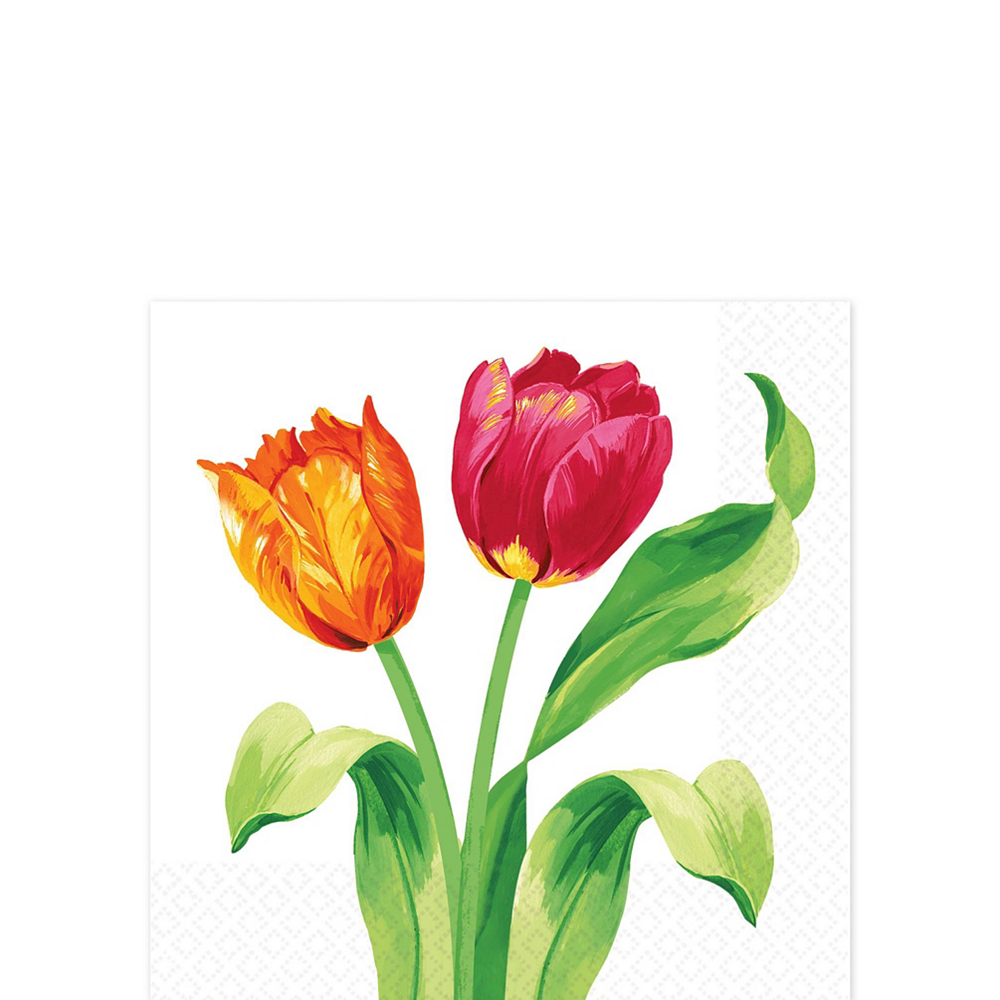 Spring Tulips Tableware Kit for 16 Guests Image #9
