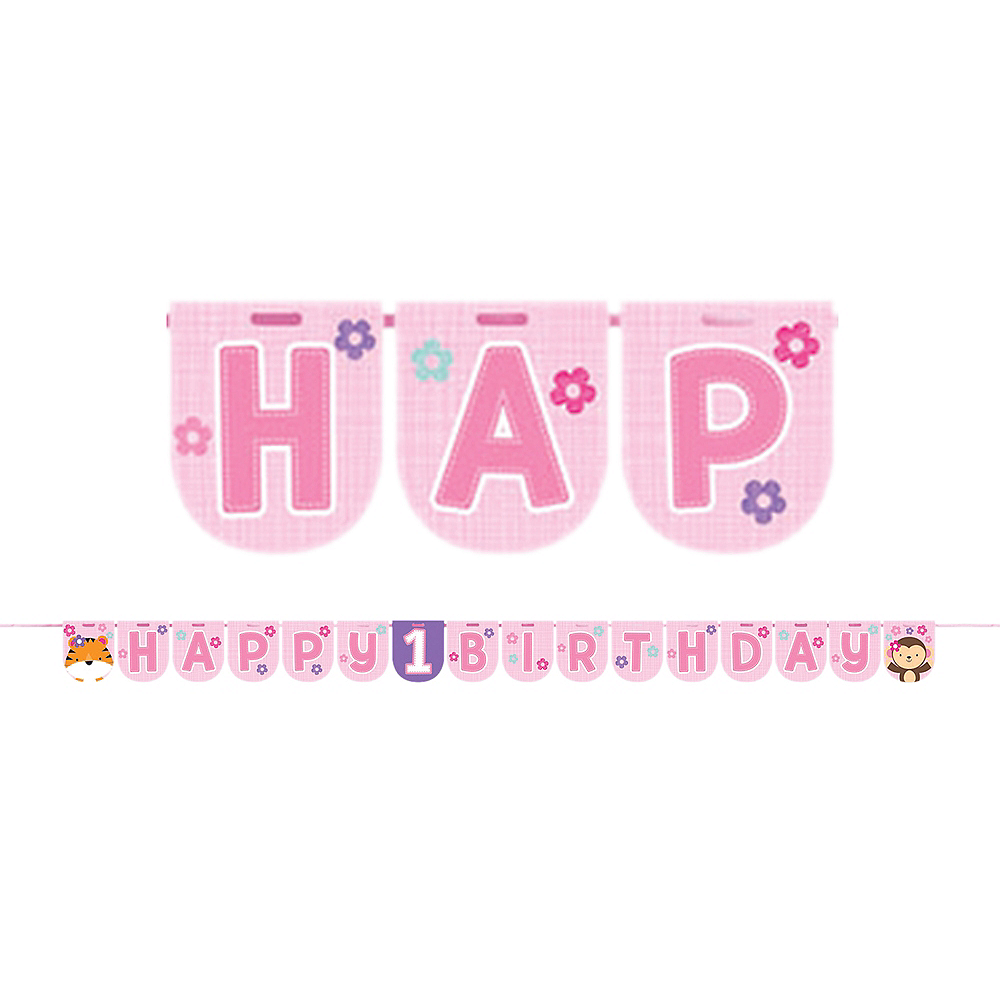 Pink One is Fun 1st Birthday Banner Image #1