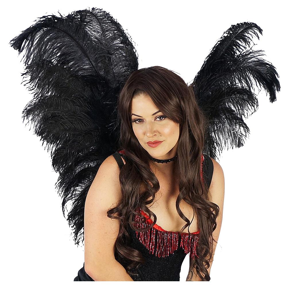 Elegant Black Feather Wings Image #1