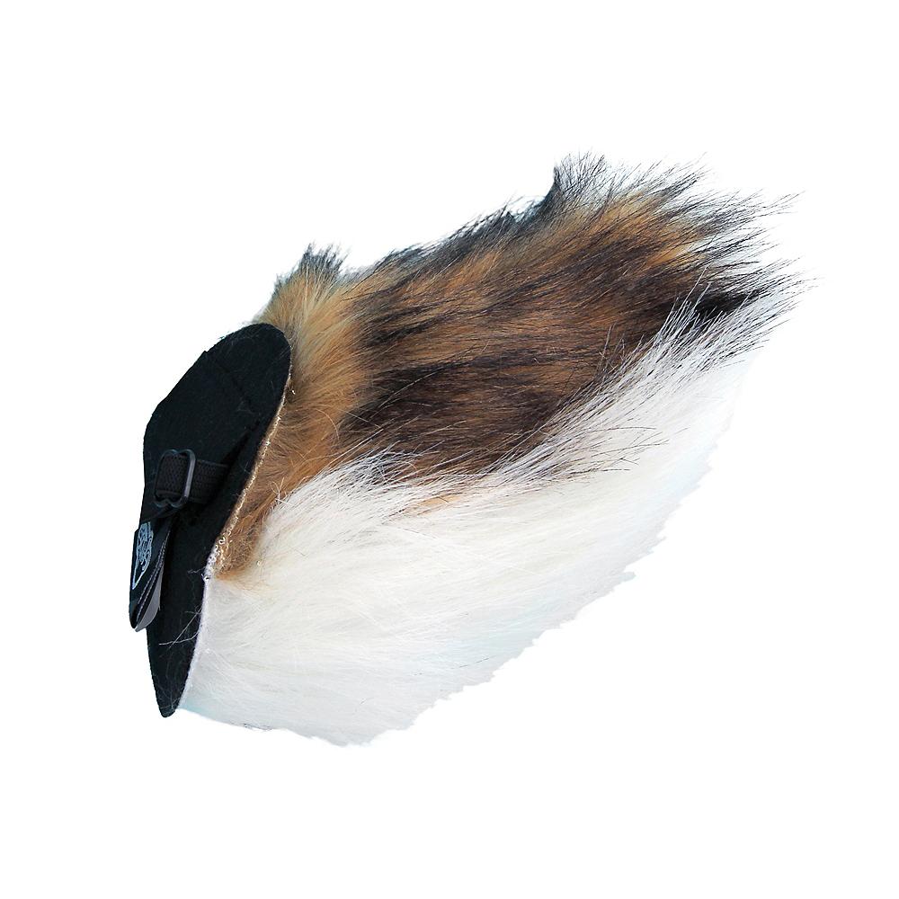 Deer Tail Image #1